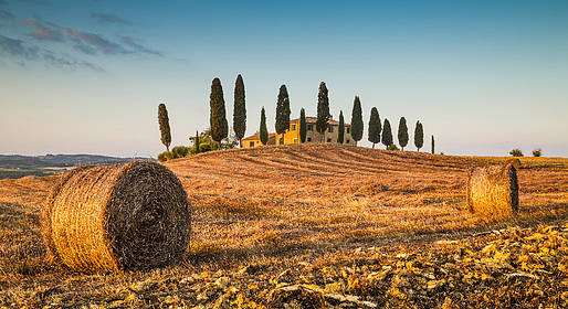 Tuscany Art & Wine Tour