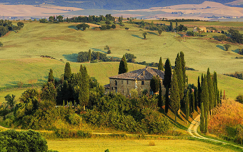 Tuscany Day Tours - Day Tours