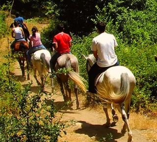 Trekking a Cavallo in Alta Val di Cecina Hotel