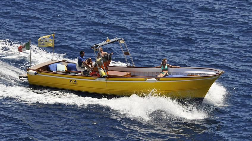 Capri Whales Excursions by sea Capri