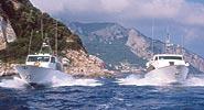 Capri Transfers - Trasporti e noleggio